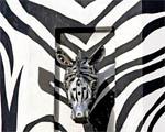Obrázek - Zebra