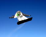 Obrázek - Snowboarder