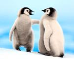 Obrázek - Mláďata tučňáků v debatě
