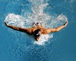 Obrázek - Závodní plavání styl motýlek