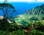 Obrázek - Kalalau Valley Kauai Havaj
