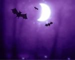 Obr�zek - Halloween je op�t zde