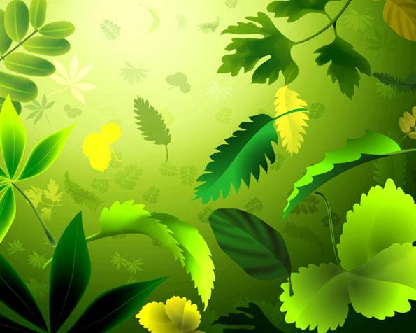 Obrázek na plochu v rozlišení 1280 x 1024 - Kombinace zelených listů