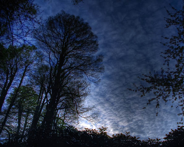 Obrázek na plochu v rozlišení 1280 x 1024 - Noční probuzení