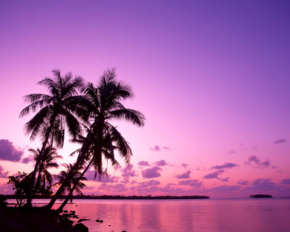 Obrázek na plochu v rozlišení 1280 x 1024 - Pláž s palmami