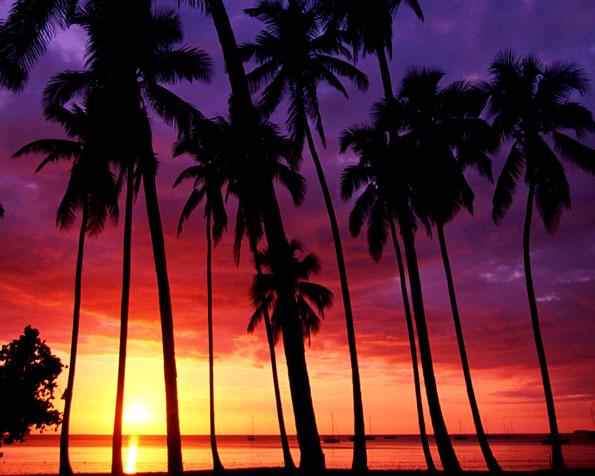 Obrázek na plochu v rozlišení 1280 x 1024 - Nepopsatelný západ slunce