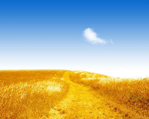 Volba: tapeta v rozlišení 1280 x 1024 - Polní cesta do nebe