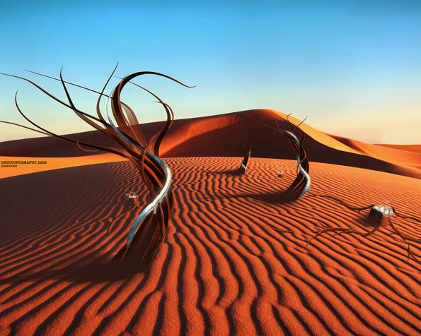 Obrázek na plochu v rozlišení 1280 x 1024 - Nový život v poušti
