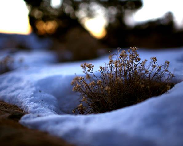 Obrázek na plochu v rozlišení 1280 x 1024 - Konec zimního období