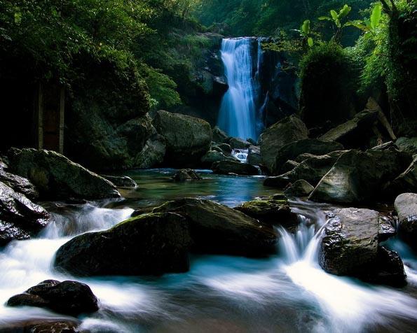 Obrázek na plochu v rozlišení 1280 x 1024 - Řeka v lese