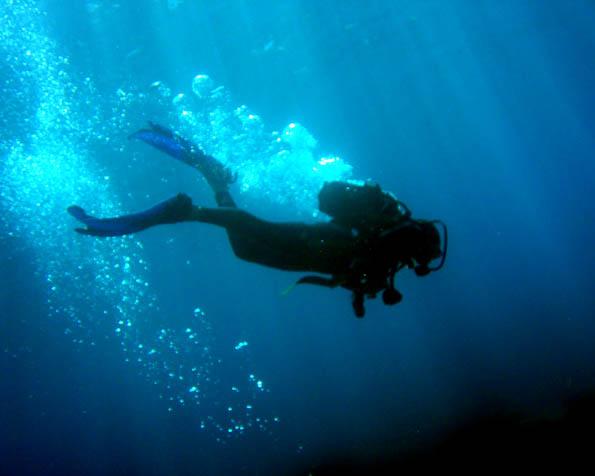 Obrázek na plochu v rozlišení 1280 x 1024 - Potápěč