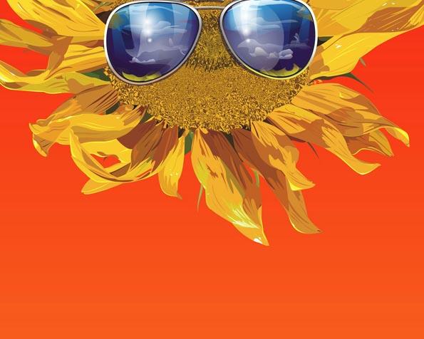Obrázek na plochu v rozlišení 1280 x 1024 - Slunečnice