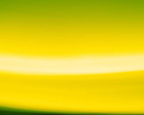 Obrázek na plochu v rozlišení 1280 x 1024 - Žlutozelený přechod