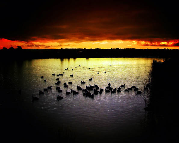 Volba: tapeta v rozlišení 1280 x 1024 - Jezero při západu slunce