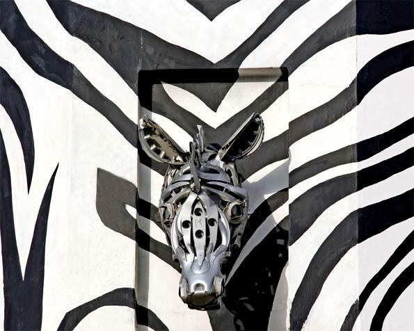 Obrázek na plochu v rozlišení 1280 x 1024 - Zebra